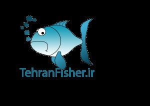 فروشگاه و آموزش ماهیگیری با لنسر