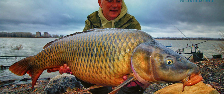 صید ماهی کپور