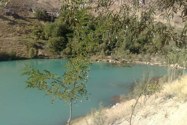 ماهیگیری در دریاچه امامزاده علی