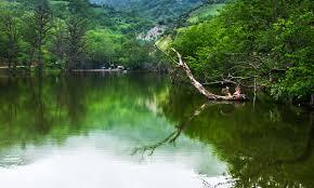 ماهیگیری در دریاچه شورمست